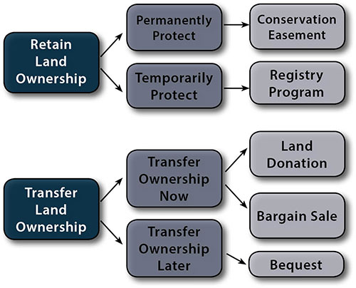 Diagram of options for protecting land